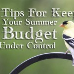 tips for summer budgeting